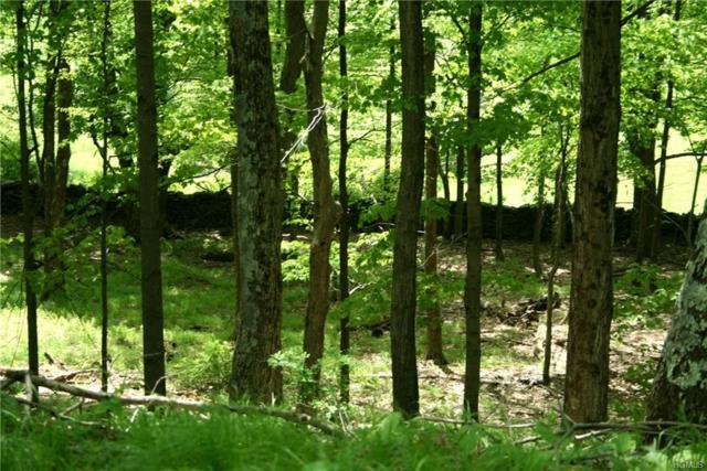 Blackberry Lake Road, Jeffersonville, NY 12748 (MLS #4996389) :: Mark Boyland Real Estate Team