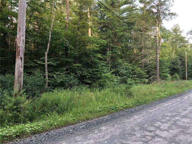 Lee Cole Road Tr22, Bethel, NY 12720 (MLS #4996399) :: William Raveis Legends Realty Group