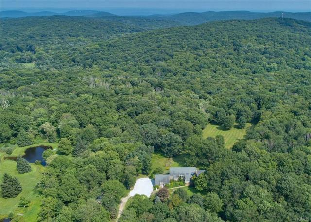 650 N Birch Hill Road, Patterson, NY 12563 (MLS #4997717) :: The Anthony G Team