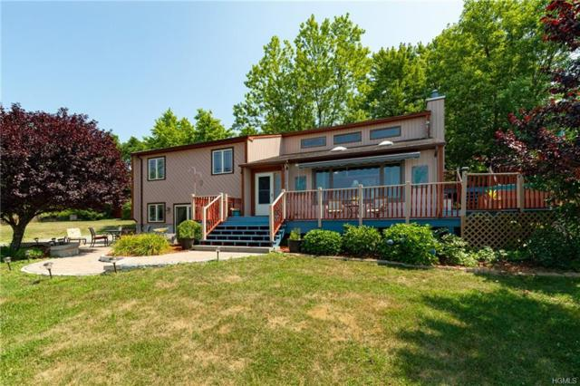 106 Jameson Hill Road, Clinton Corners, NY 12514 (MLS #4998758) :: Marciano Team at Keller Williams NY Realty