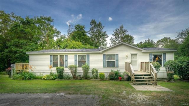 17 Schwab Lane, Pine Bush, NY 12566 (MLS #5000043) :: William Raveis Legends Realty Group