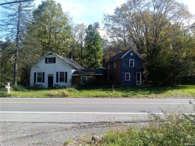 51 Forge Hill Road, New Windsor, NY 12553 (MLS #5001441) :: William Raveis Legends Realty Group