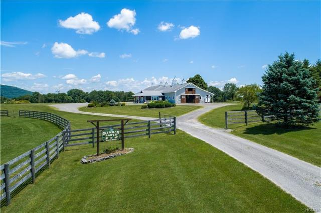209 Cricket Hill Road, Dover Plains, NY 12522 (MLS #5001746) :: Mark Boyland Real Estate Team