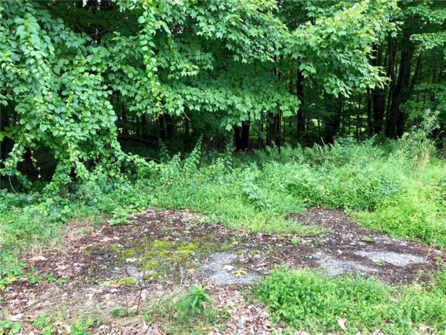 88 Pin Oak Drive, New Windsor, NY 12553 (MLS #5002532) :: Mark Boyland Real Estate Team