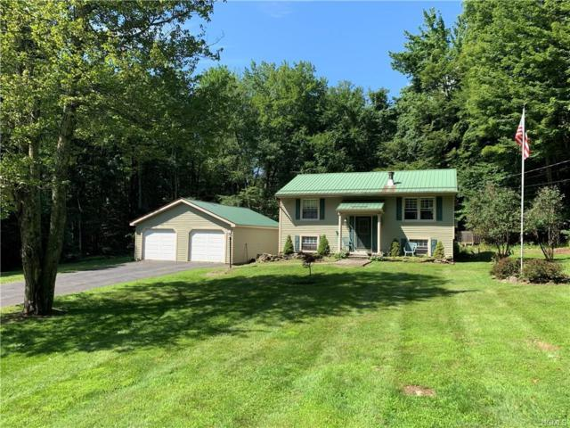 61 Hall Road, Grahamsville, NY 12740 (MLS #5003252) :: William Raveis Legends Realty Group