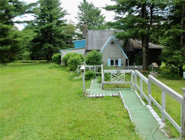 71 Kawlija Road, Grahamsville, NY 12740 (MLS #5004719) :: William Raveis Legends Realty Group