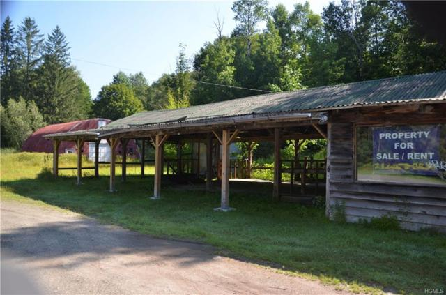 40 Rockland Road, Roscoe, NY 12776 (MLS #5005520) :: William Raveis Legends Realty Group