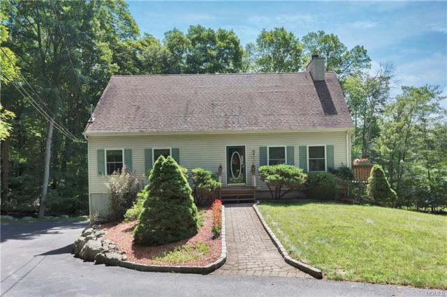 320 Dennytown Road, Putnam Valley, NY 10579 (MLS #5005529) :: Mark Boyland Real Estate Team