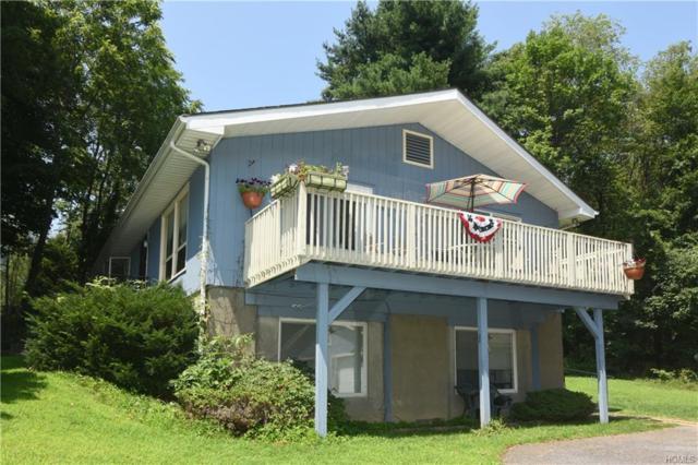 215 S White Rock Road, Holmes, NY 12531 (MLS #5005862) :: William Raveis Baer & McIntosh