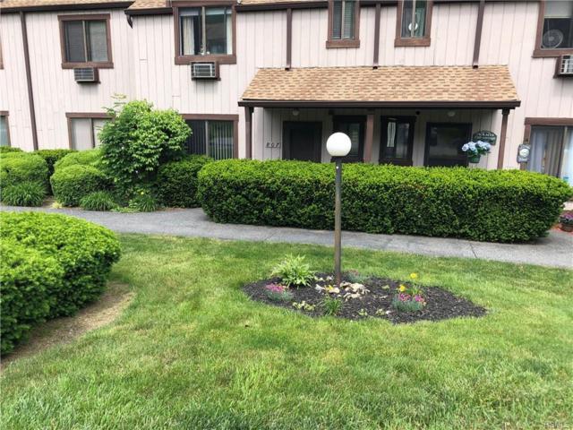 807 Swan Hollow Road, Monroe, NY 10950 (MLS #5006694) :: Marciano Team at Keller Williams NY Realty