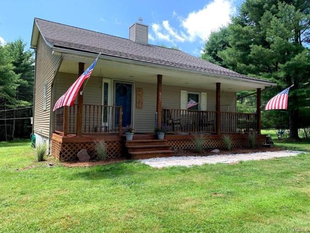 807 Beaverbrook (County Rd 22) Road, Narrowsburg, NY 12764 (MLS #5007459) :: Mark Boyland Real Estate Team