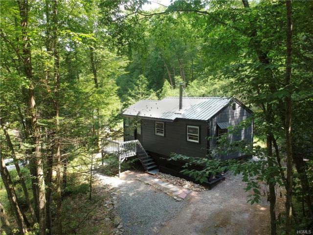 42 Prince Road, Neversink, NY 12765 (MLS #5008413) :: Mark Boyland Real Estate Team