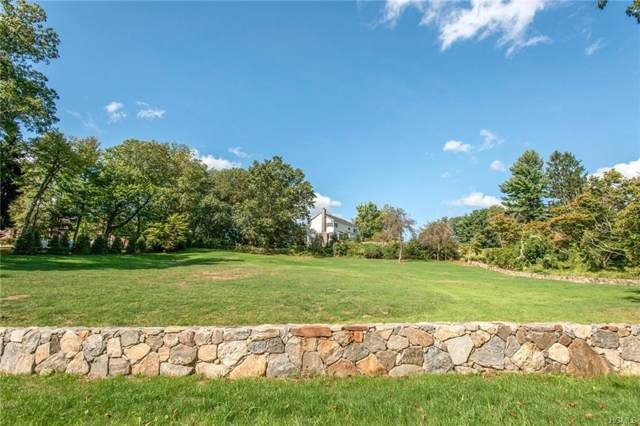 112A Wilson Park Drive, Tarrytown, NY 10591 (MLS #5009126) :: William Raveis Baer & McIntosh