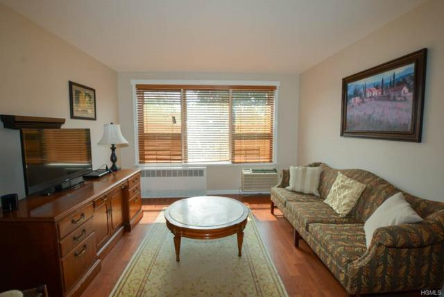 10 Old Mamaroneck Road 6H, White Plains, NY 10605 (MLS #5009444) :: Shares of New York