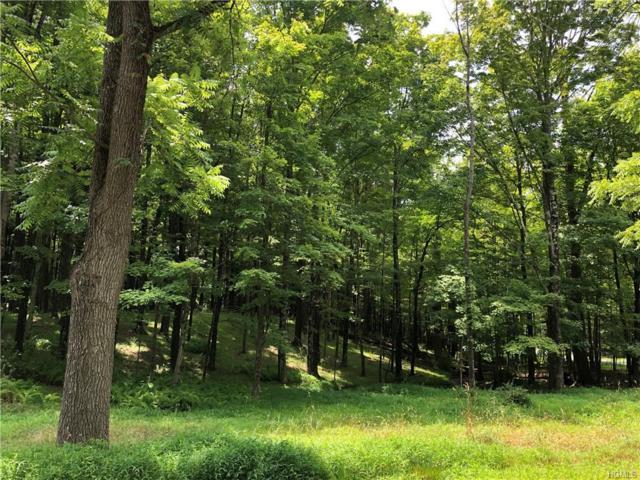 Aumick Road, Gardiner, NY 12525 (MLS #5010277) :: Mark Boyland Real Estate Team
