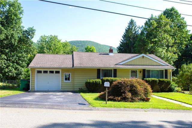 17 Birch Drive, Beacon, NY 12508 (MLS #5012340) :: Mark Boyland Real Estate Team