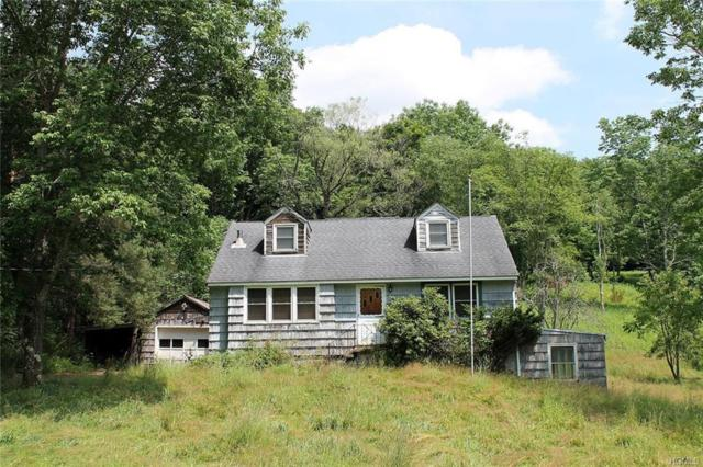 9087 County Hwy 28, Hancock, NY 12760 (MLS #5013735) :: William Raveis Legends Realty Group