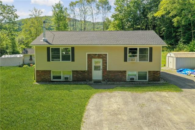 21 Cooperstown Road, Dover Plains, NY 12522 (MLS #5013819) :: William Raveis Legends Realty Group