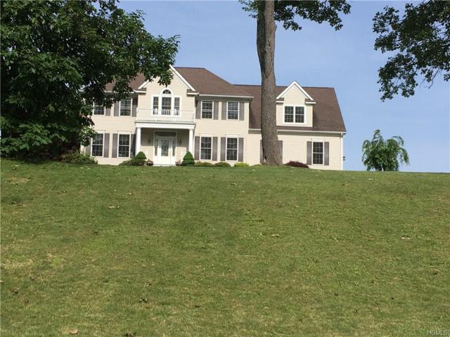 60 Grist Mill Lane, Pleasant Valley, NY 12569 (MLS #5015985) :: Mark Boyland Real Estate Team