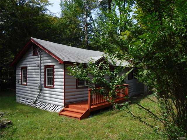 2 Thompson Place, Smallwood, NY 12778 (MLS #5017374) :: William Raveis Legends Realty Group