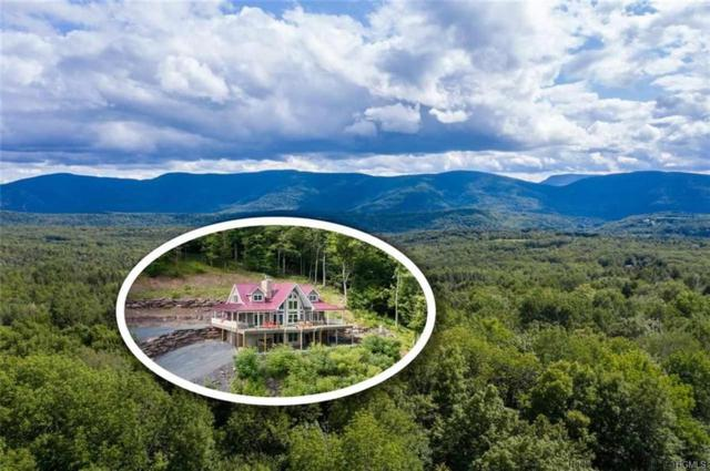 337 Bailey Road, Windham, NY 12470 (MLS #5018003) :: William Raveis Legends Realty Group
