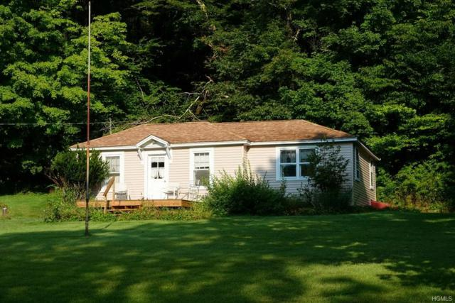 43 Old Cty Road 95, North Branch, NY 12766 (MLS #5019249) :: William Raveis Legends Realty Group