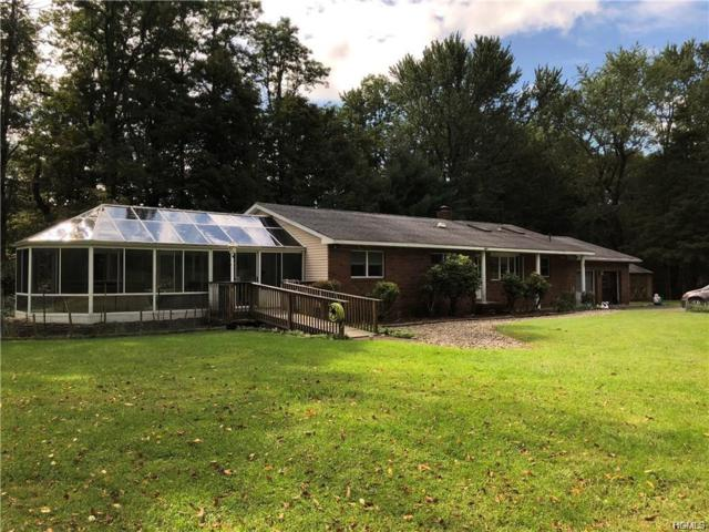 30 Doctor Drive, Wurtsboro, NY 12790 (MLS #5019472) :: Mark Boyland Real Estate Team