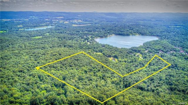 Sylvan Lake Road, Hopewell Junction, NY 12533 (MLS #5019860) :: The Home Team