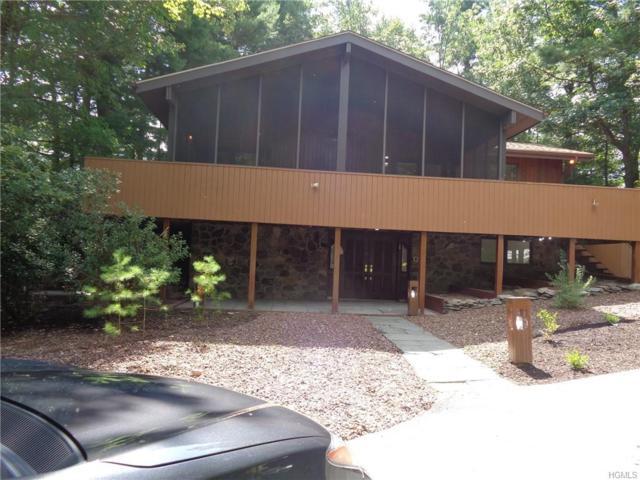 10 Brighton Lane, Rock Hill, NY 12775 (MLS #5021286) :: Mark Boyland Real Estate Team