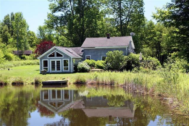 1667 Shandelee Road, Youngsville, NY 12791 (MLS #5021311) :: William Raveis Legends Realty Group