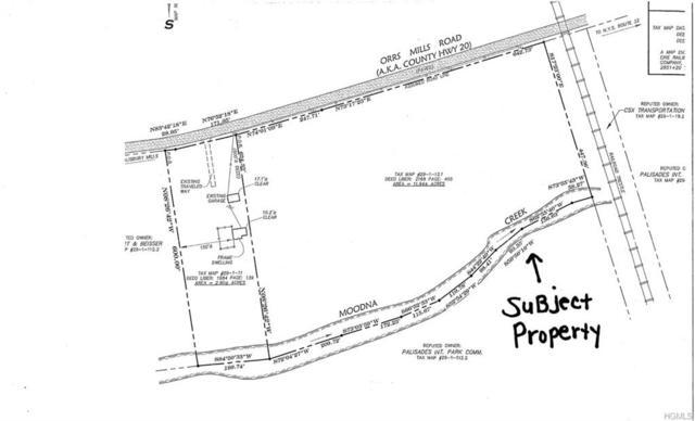 180 Orrs Mills Road, Salisbury Mills, NY 12577 (MLS #5021347) :: The McGovern Caplicki Team