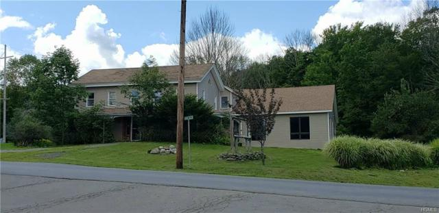 40 Katrina Falls Road, Rock Hill, NY 12775 (MLS #5021604) :: Mark Boyland Real Estate Team