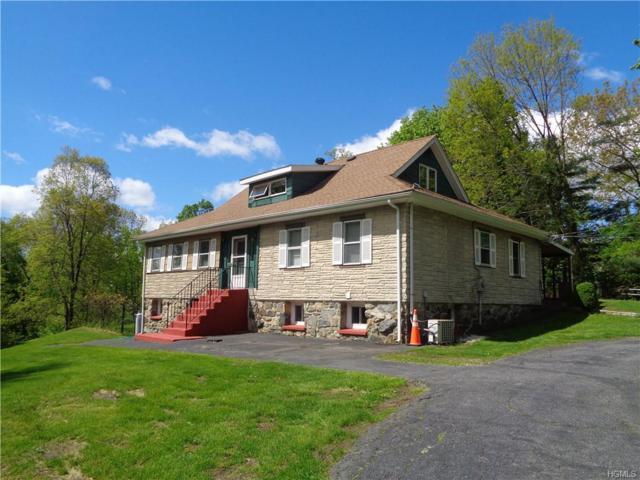 487-489 E Branch Road, Patterson, NY 12563 (MLS #5022171) :: Mark Boyland Real Estate Team