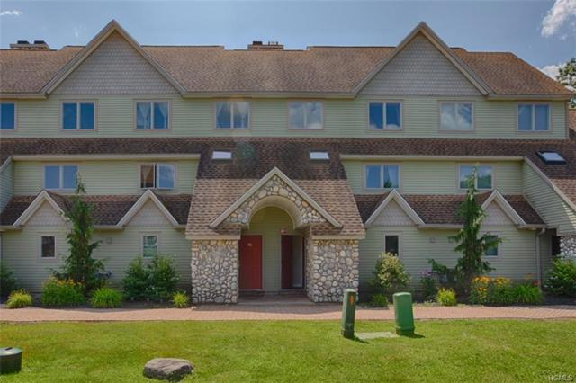 274 County Route 65 #97, Windham, NY 12496 (MLS #5022288) :: The Anthony G Team