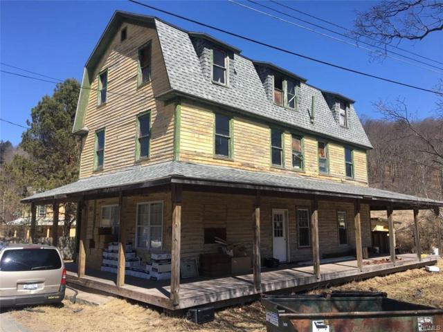 19 Main Street, Parksville, NY 12768 (MLS #5022490) :: Mark Boyland Real Estate Team
