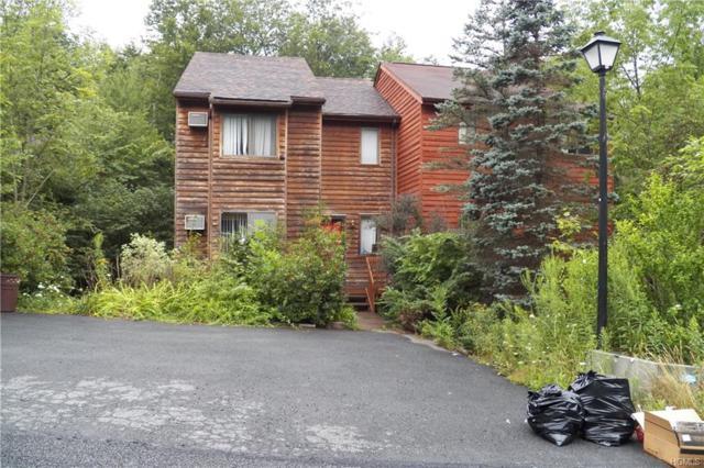 27 Meadowlark Lane, Woodridge, NY 12789 (MLS #5022583) :: Mark Boyland Real Estate Team