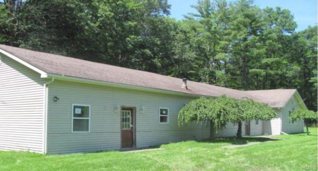 2380 Bruynswick Road, Wallkill, NY 12589 (MLS #5023454) :: Mark Boyland Real Estate Team