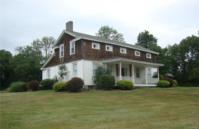 78 Kurpick Road, Port Jervis, NY 12771 (MLS #5023556) :: William Raveis Legends Realty Group