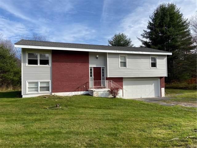 338 Horseshoe Lake Road, Swan Lake, NY 12783 (MLS #5040792) :: William Raveis Baer & McIntosh