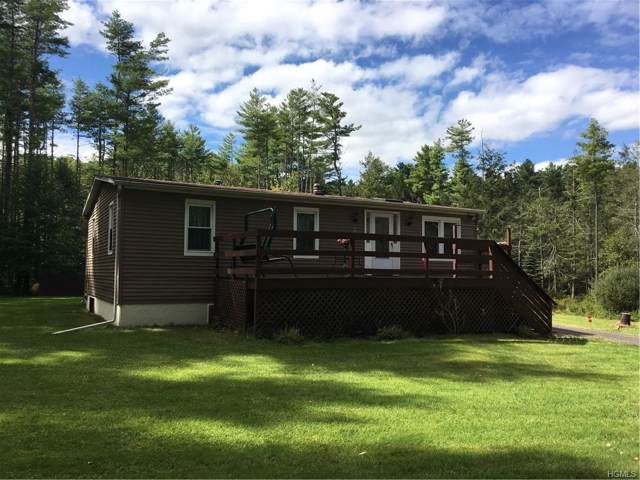 6946 State Route 52, Lake Huntington, NY 12752 (MLS #5044950) :: Mark Seiden Real Estate Team