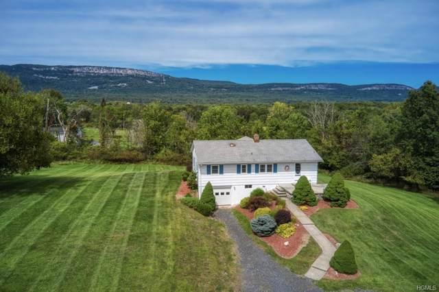 216 Mckinstry Road, Gardiner, NY 12525 (MLS #5053305) :: Mark Boyland Real Estate Team