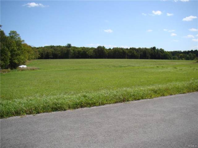 Perry Rd Perry Road Tr 72, Bethel, NY 12720 (MLS #5057774) :: Shares of New York
