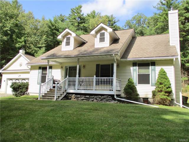 250 Rio Dam Road, Glen Spey, NY 12737 (MLS #5058701) :: Shares of New York