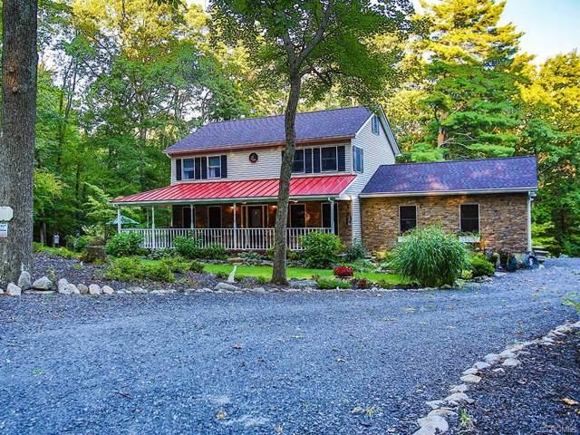 383 Cox Road, Pine Bush, NY 12566 (MLS #5060044) :: Shares of New York