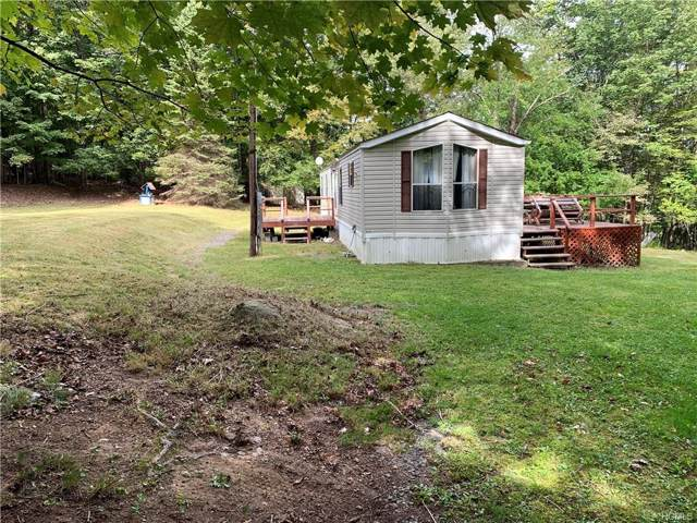 60 Hall Road, Grahamsville, NY 12740 (MLS #5060272) :: William Raveis Legends Realty Group