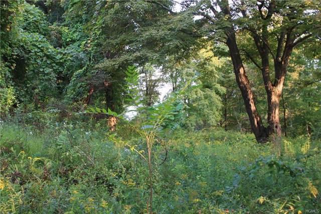 198 Sylvan Lake Road, Hopewell Junction, NY 12533 (MLS #5060292) :: Shares of New York