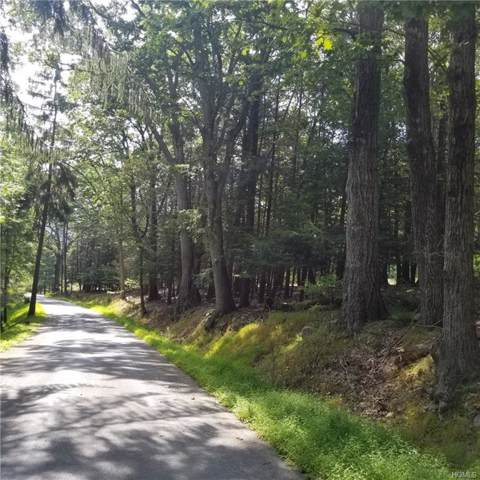 Mt Meenagha Road, Ellenville, NY 12428 (MLS #5060341) :: Shares of New York