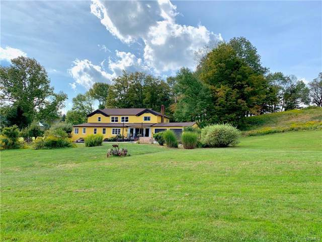 114 Castle Hill Road, Parksville, NY 12768 (MLS #5060720) :: Shares of New York