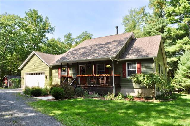 3755 State Route 52, Pine Bush, NY 12566 (MLS #5061556) :: Mark Boyland Real Estate Team
