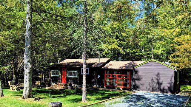28 W Tusten Place, Smallwood, NY 12778 (MLS #5061814) :: Shares of New York